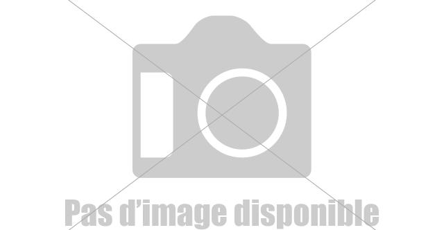 www.rencontres algerie